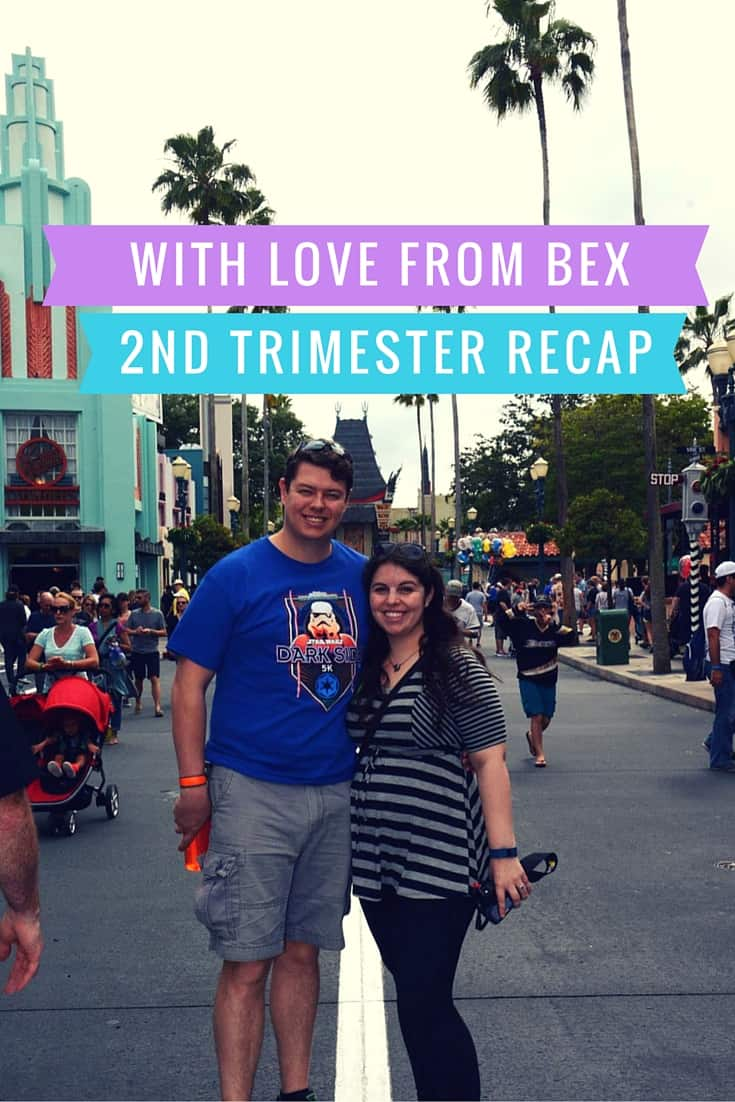 Pregnancy Bliss: 2nd Trimester Recap